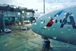 Why is it so Popular to Dislike American Airlines and AAdvantage Lately?
